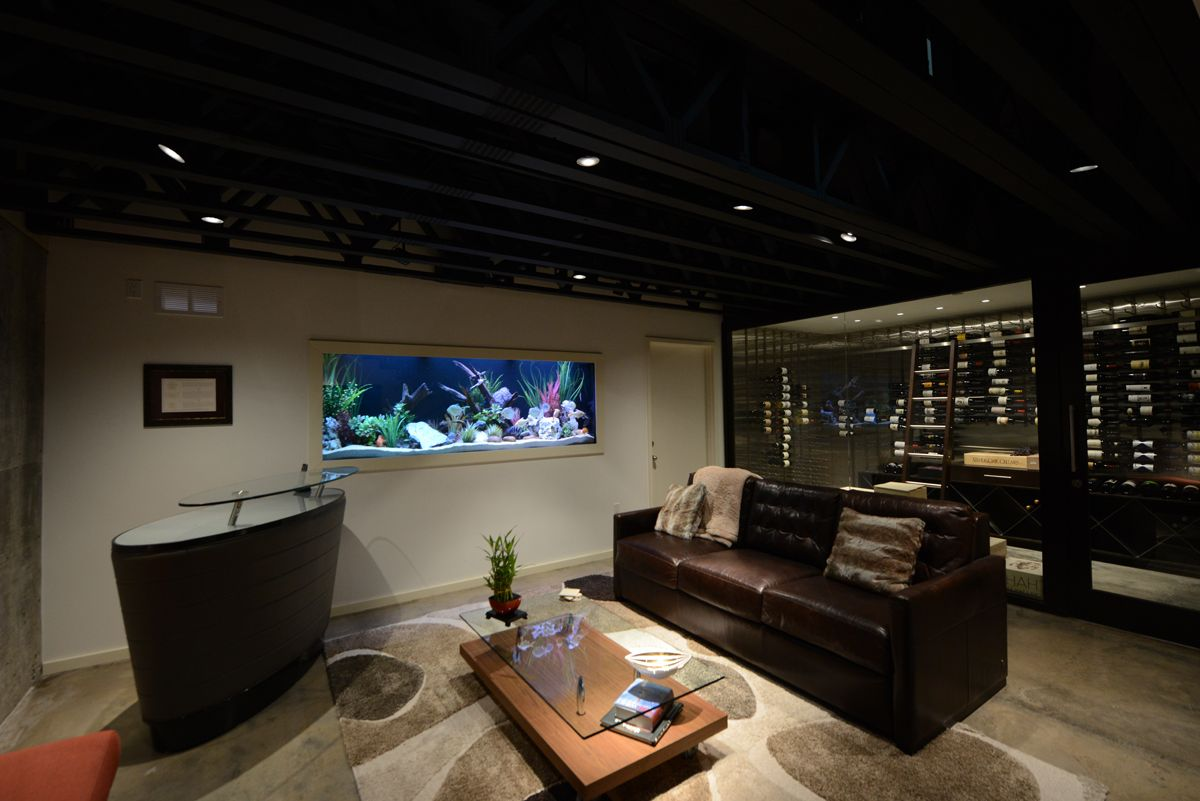 Freshwater aquarium fish dallas - Private Residence Man Cave Dallas Tx Custom Built In Freshwater Aquarium By Fish