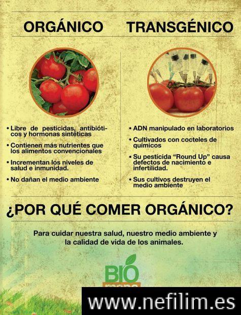 Como Las Empresas Que Producen Alimentos Transgenicos Han Dependido Siempre Del Engano Alimento Transgenico Alimentos Organicos Aditivos Alimentarios