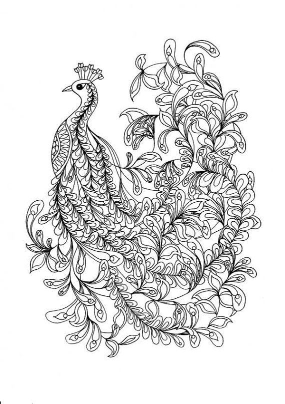 Printable Coloring Pages of a fancy Peacock line drawing An instant - fresh dayton dragons coloring pages