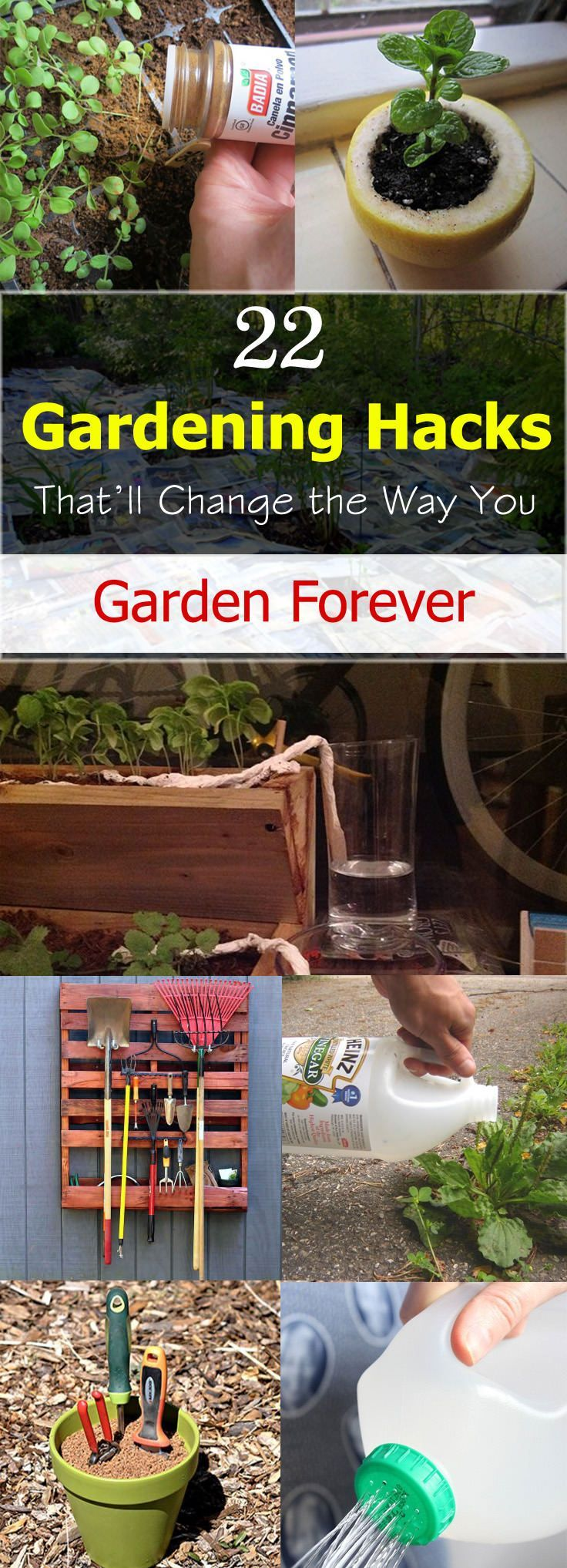 Gardening Hacks That'll Change the Way You Garden Forever These 22 clever and easy gardening hacks are so useful that using them can change the way you garden forever.These 22 clever and easy gardening hacks are so useful that using them can change the way you garden forever.