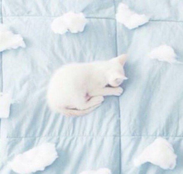 aesthetic, blue, cat, cloud, pale, pastel, psycho, tumblr ...