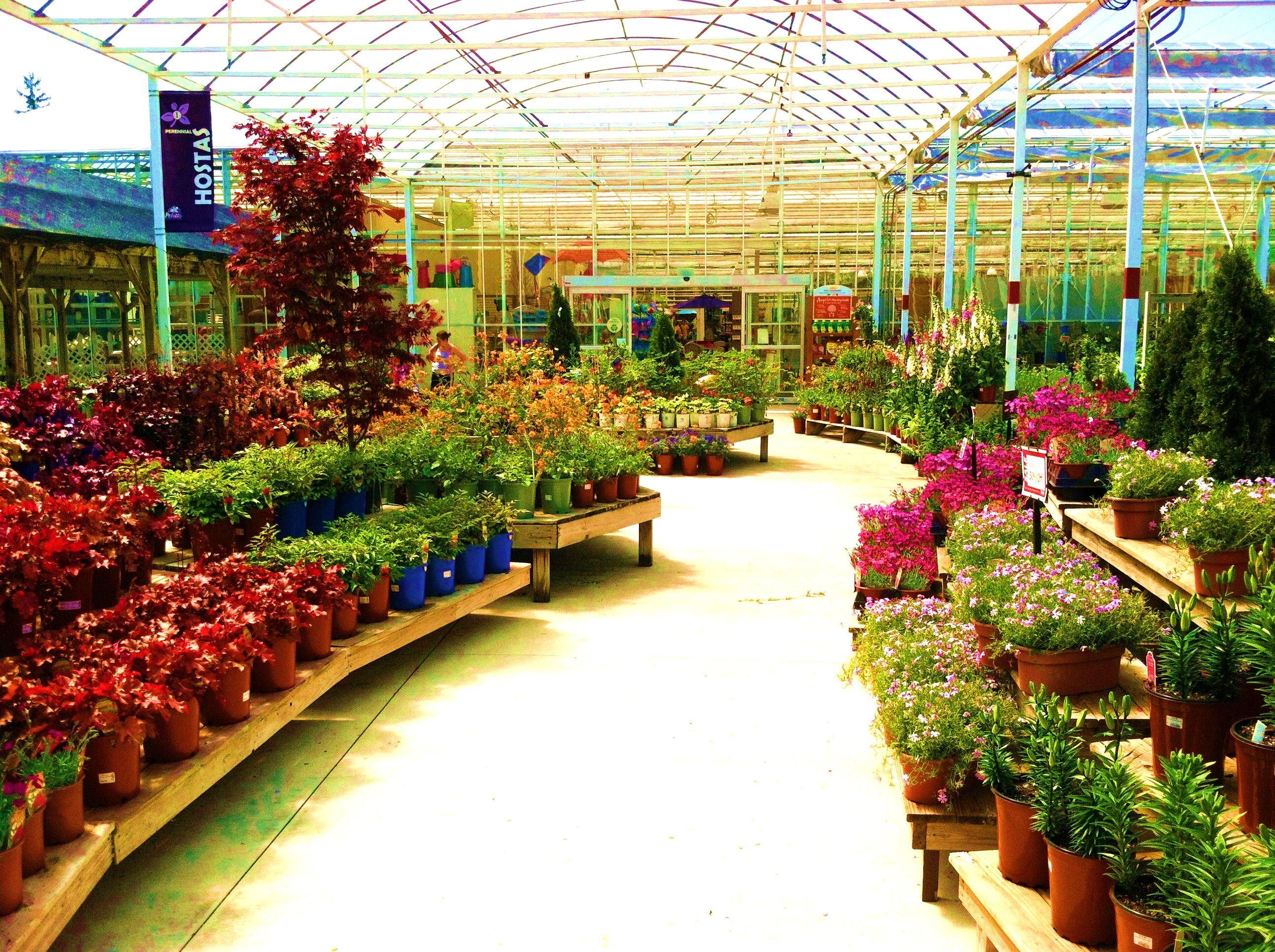 armstrong garden centers santa monica los angeles ca