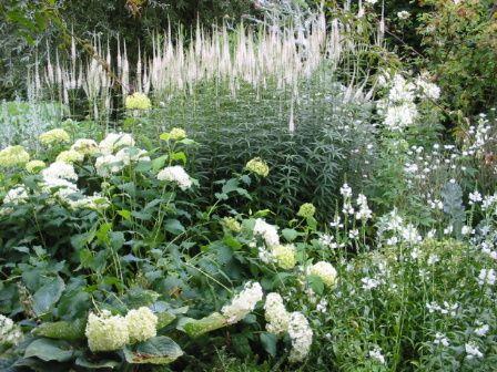 Weißer Garten weißer garten sissinghurst garten gärten und
