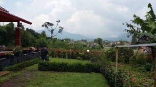 Tempat Menginap Villa Nuansa Alam Di Lembang Sewa Villa Lembang Villa Istana Bunga Bandung Villa Pemandangan Alam