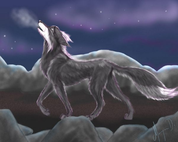 black anime wolf anime wolves one black anime wolf the
