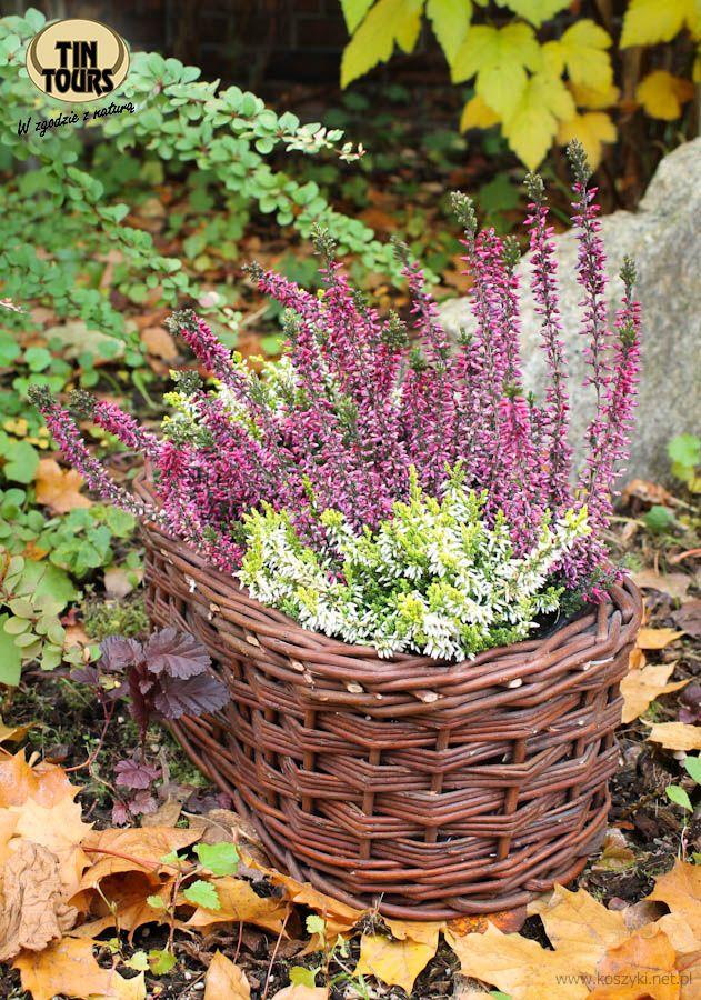 Mala Balkonowka Wiklinowa 30x16x11h Cm Plants