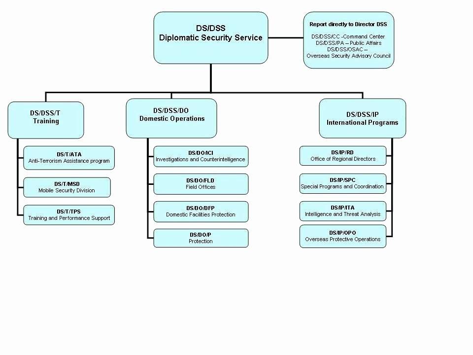 Nonprofit Organizational Chart Template Elegant Template Non
