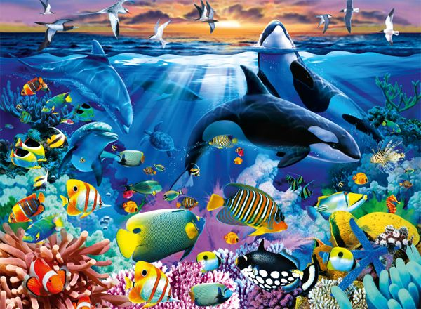 Jigsaw Ravensburger Oceanic Life 200xxl Suitable For Adults With