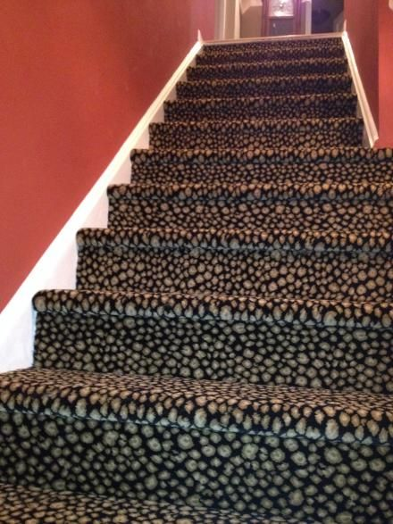 Animal Print Carpet Stairs With