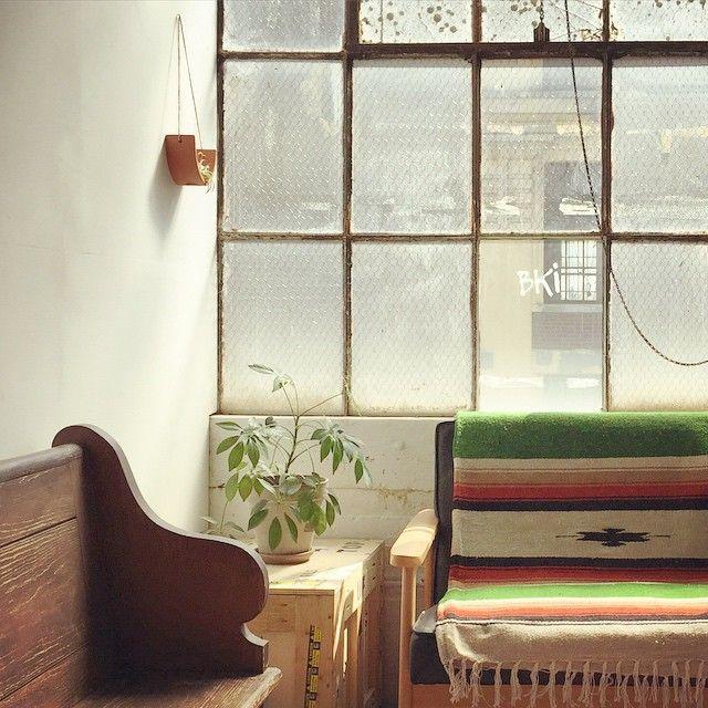 @mudpuppy terracotta hanging air plant cradle in the enviable studio of Virginia Sasser @ginsasser on instagram