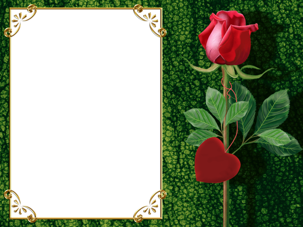 Transparent Green PNG Photo Frame with Rose and Heart | منتدى مدينة ...