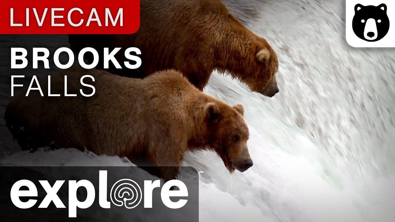 Brooks Falls Katmai National Park, Alaska powered by