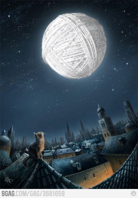 Kitten's dream. Awww. :3
