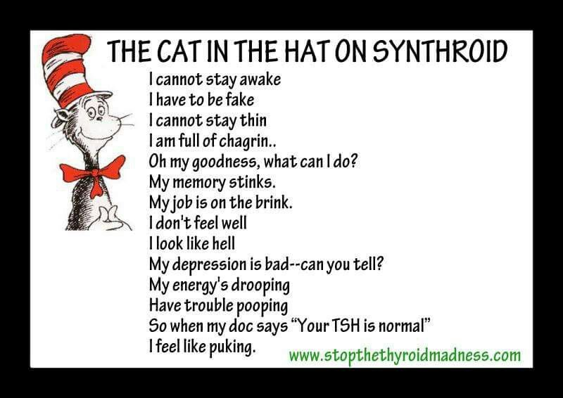 The Cat in the Hat on Synthroid