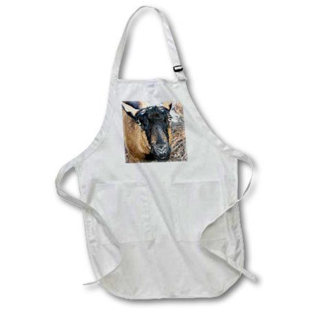 3dRose oberhasli goat, Medium Length Apron, 22 by 24-inch, With Pouch Pockets