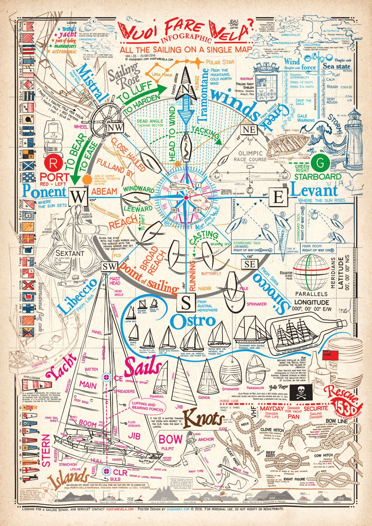 All the sailing in a poster infographic | Veleros, Velas y Escuela ...