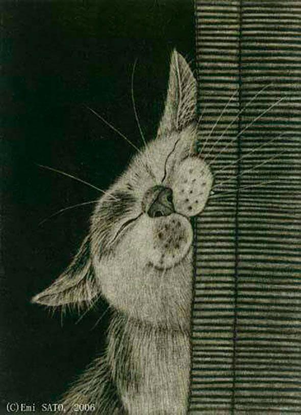 Die Sussesten Gezeichneten Katzen Katzen Katze Zeichnen Illustration Katze Tierzeichnung