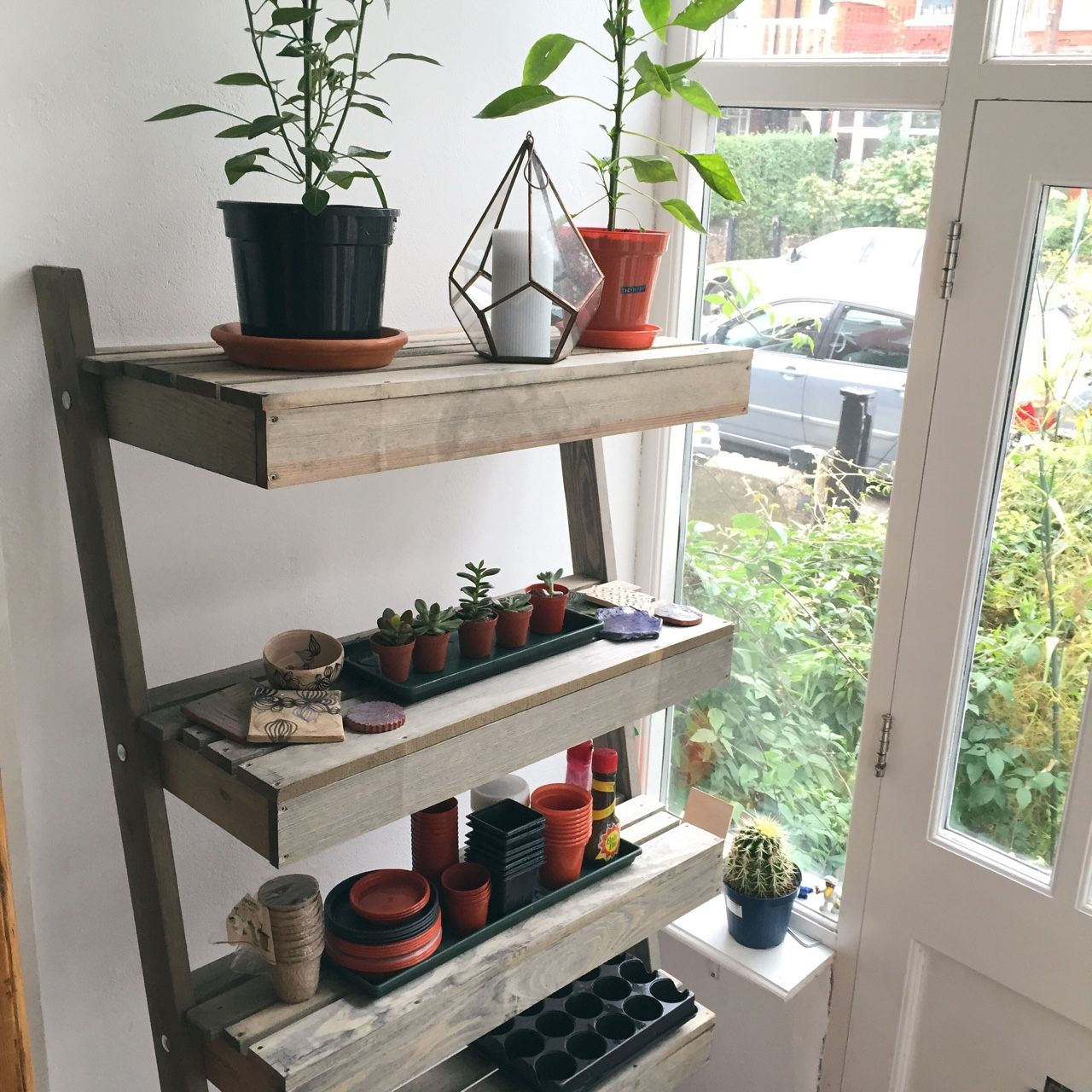 Greenhouse Shelves, Shelves