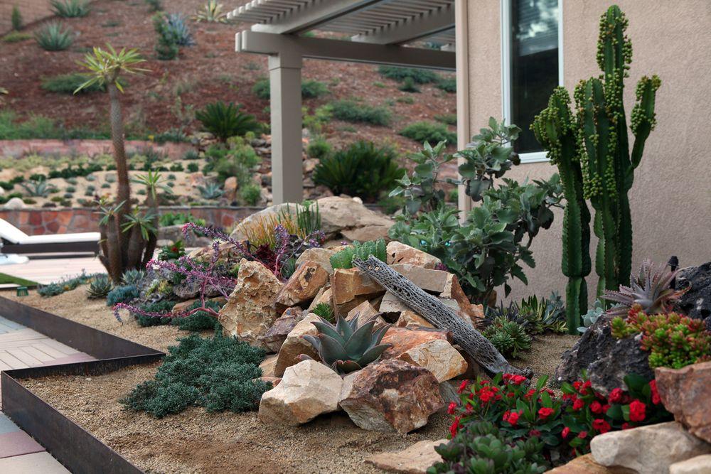 succulent garden design by better landscape and gardens