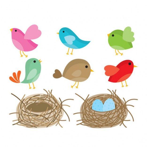 Коллекция мультфильмов птиц и гнезд Бесплатные векторы