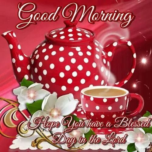 Good Morning, Hope You Have A Blessed Day In The Lord