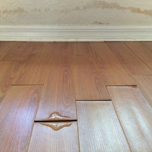 Water Damage Wood Floor Insurance Claim