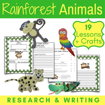 Amazon Rainforest Animals Research Writing And Craft Projects In