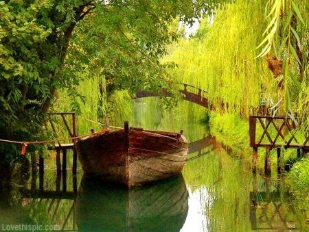 Peaceful Nature Photography Peace Nature Lake Boat Calm Greenery The Reflections Just Add Depth Weeping Willow Italy Photo Wonders Of The World