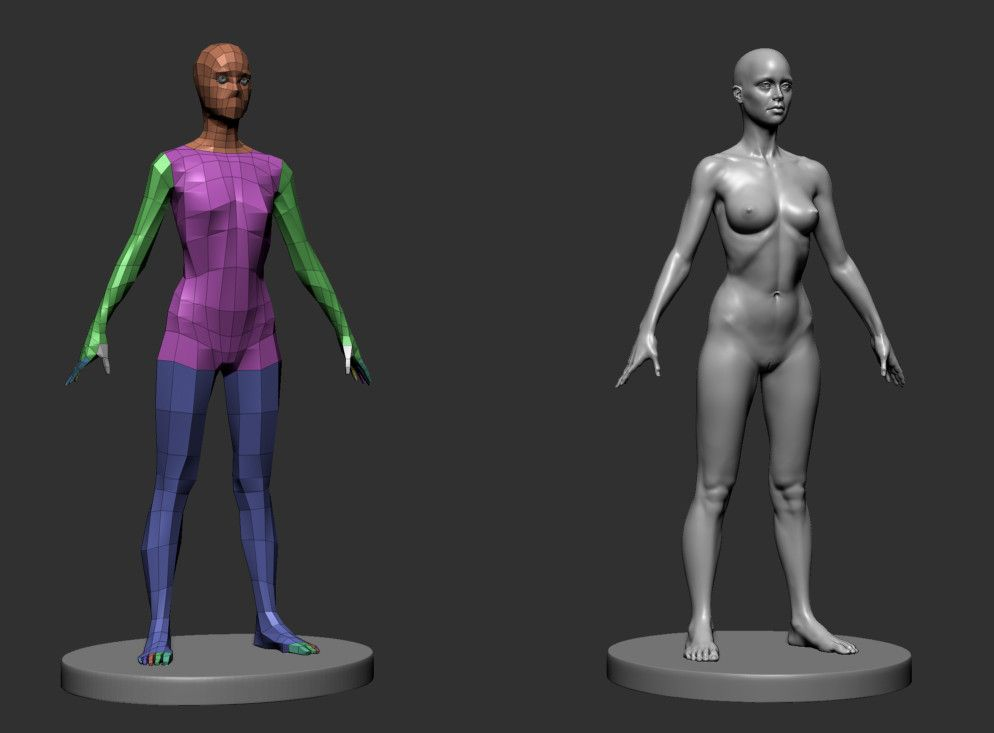 female anatomy 3d model | Character topology | Pinterest
