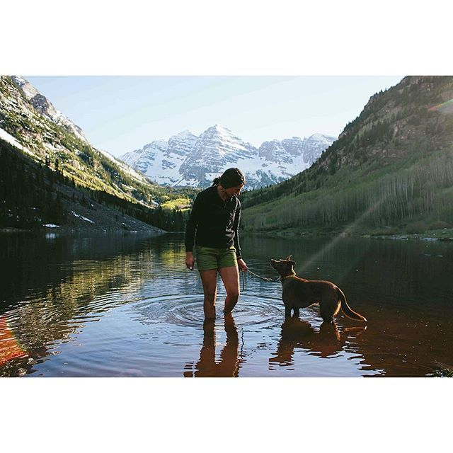 Kicked off summer with some backpacking + rendezvousing around Independence Pass this past weekend + the pups are still exhausted . kodiak_thebeardog