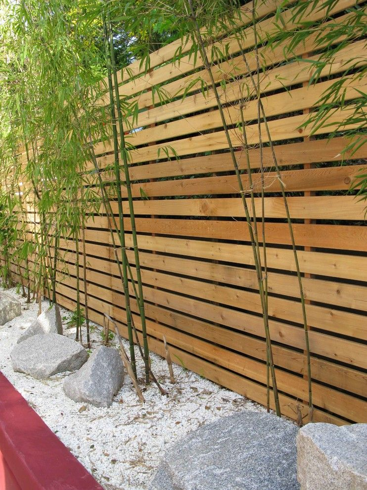tall privacy fence landscape modern with bamboo bench climbing wall