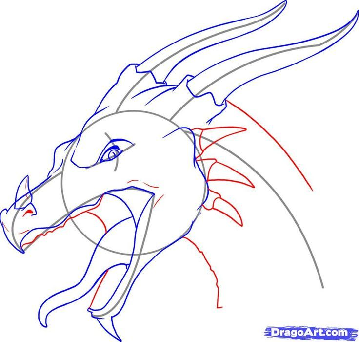 How To Draw A Dragon Head Step 9 Step By Step In 2019