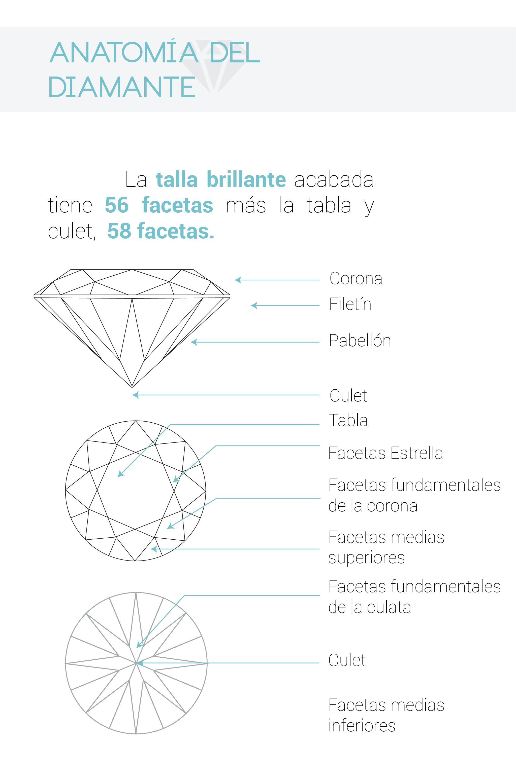 Anatomía del diamante | información | Pinterest | Diamantes y Anatomía