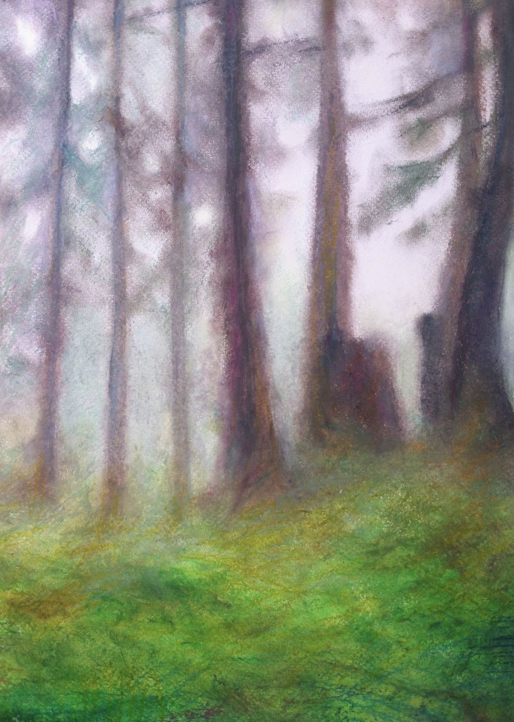 Forêt - Marie Helene Bilodeau