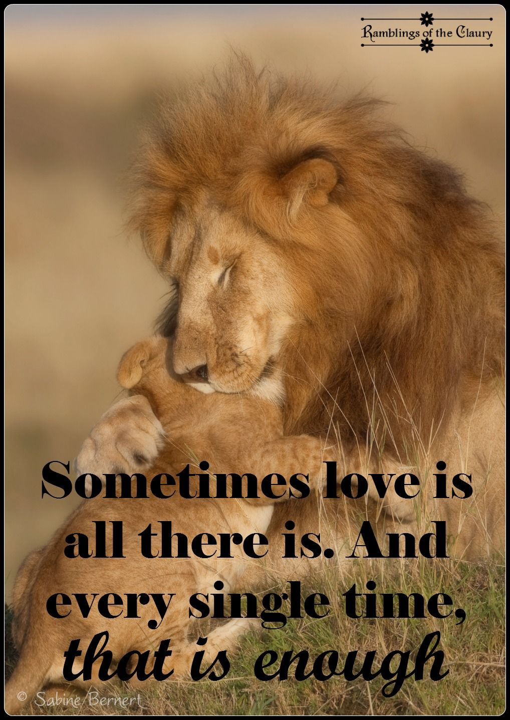 Enough love is lion and love