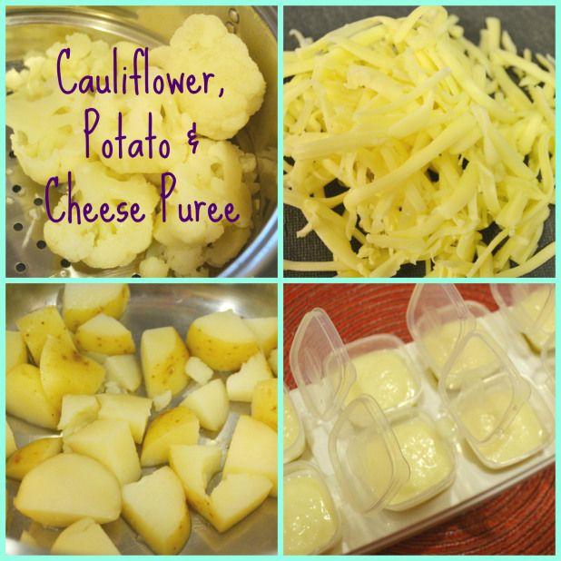 Baby food recipe cauliflower potato cheese puree if g hates baby food recipe cauliflower potato cheese puree if g hates forumfinder Gallery