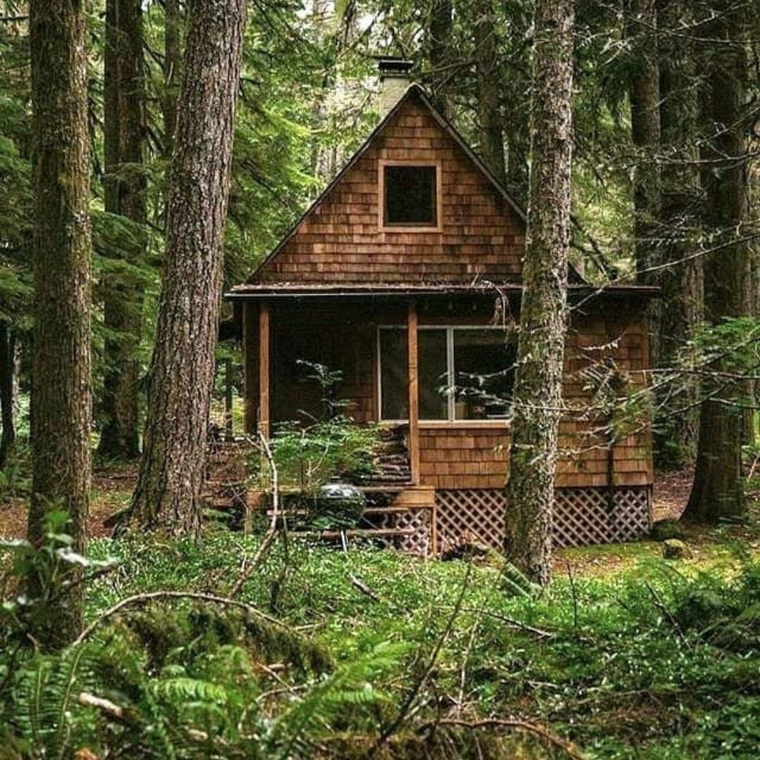 Diy Cabins Sheds Tiny Houses On Instagram Building Your Own Cabin Is Not That Hard Check Our Bio For Cabin Plans Build Your Own Cabin Diy Cabin Cabin Plans