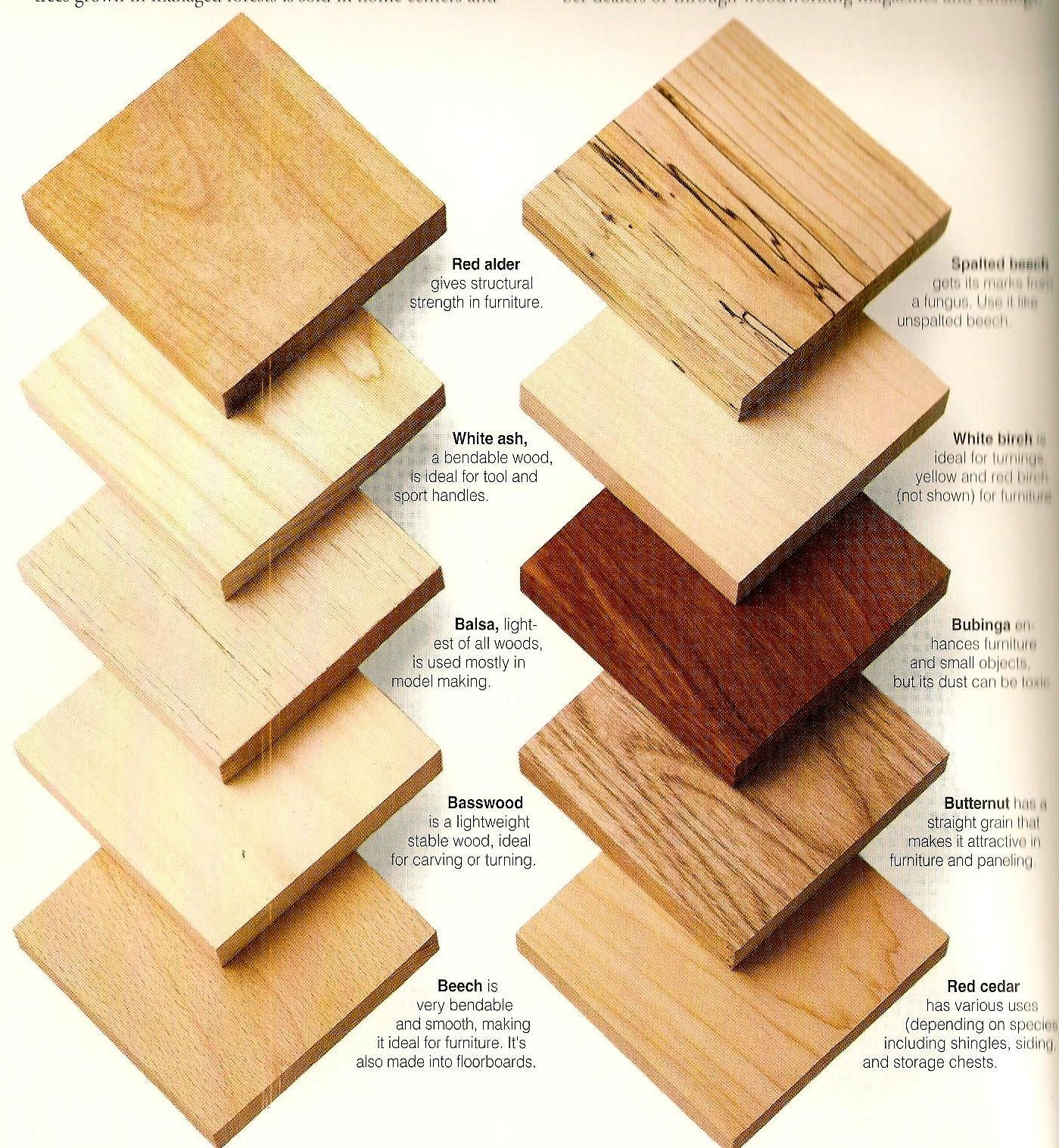 Wood Types Samples For Client Reference Wood Projects For Beginners Wood Working For Beginners Learn Woodworking