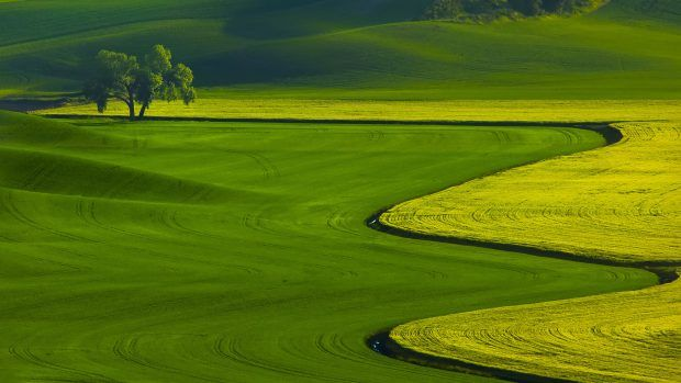 Landscape Photography Definition: Golf High Definition Wallpapers HD.