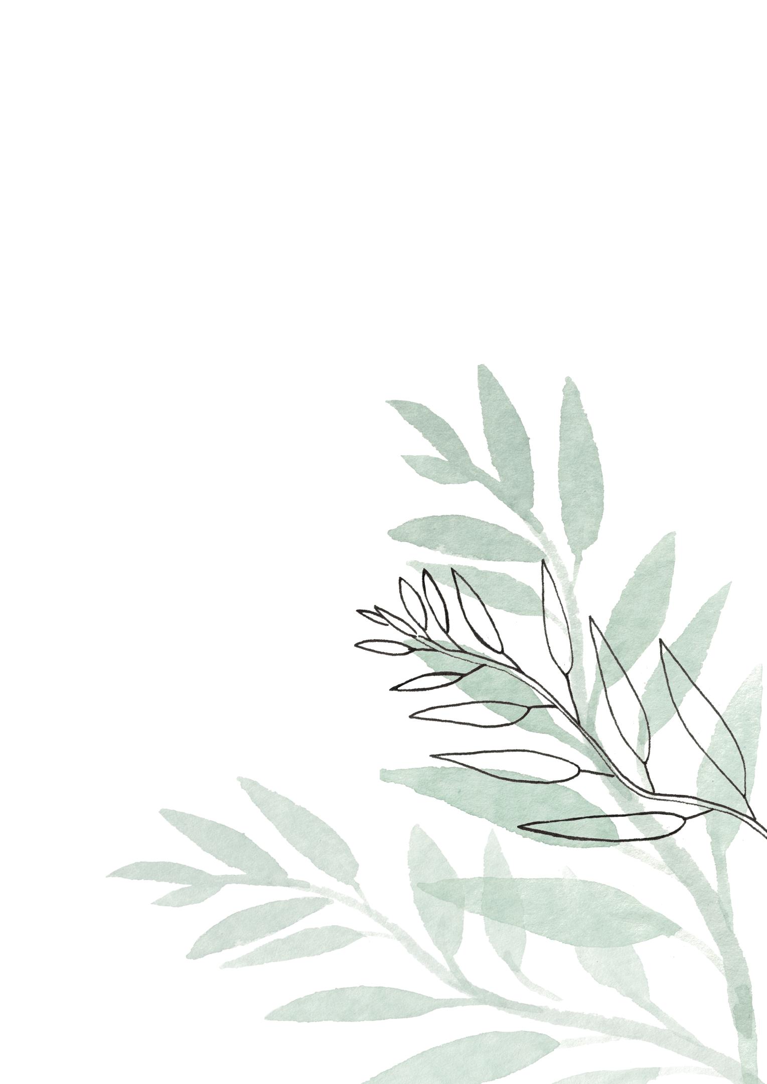 Botanische Blatt-Zweig, Aquarell Abbildung