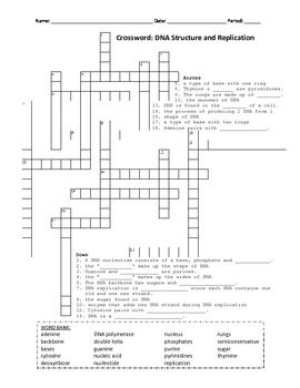 A crossword that utilizes key vocabulary terms regarding the a crossword that utilizes key vocabulary terms regarding the structure of dna and the process of malvernweather Gallery