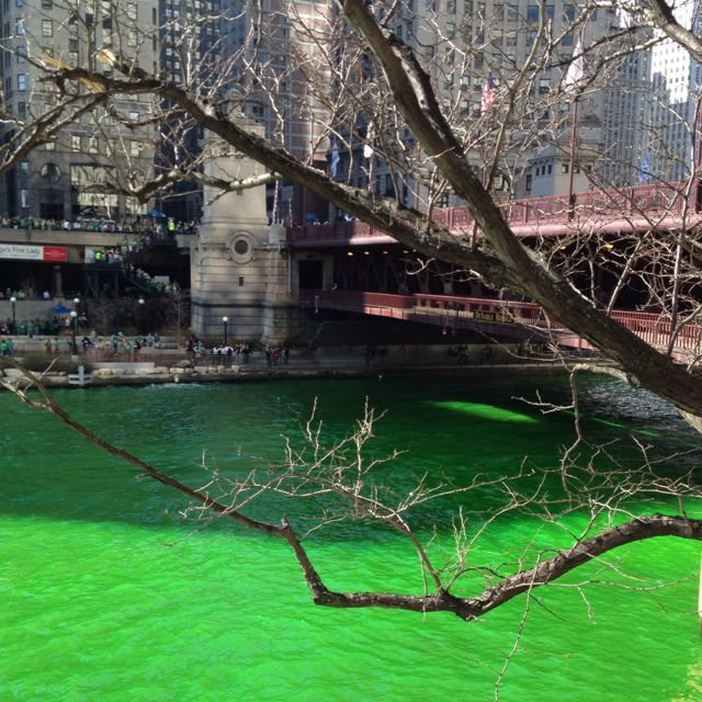 The river runs green for St. Patty's day in Chicago