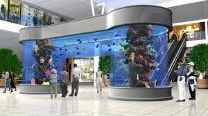 acuarios marinos gigantes buscar con google