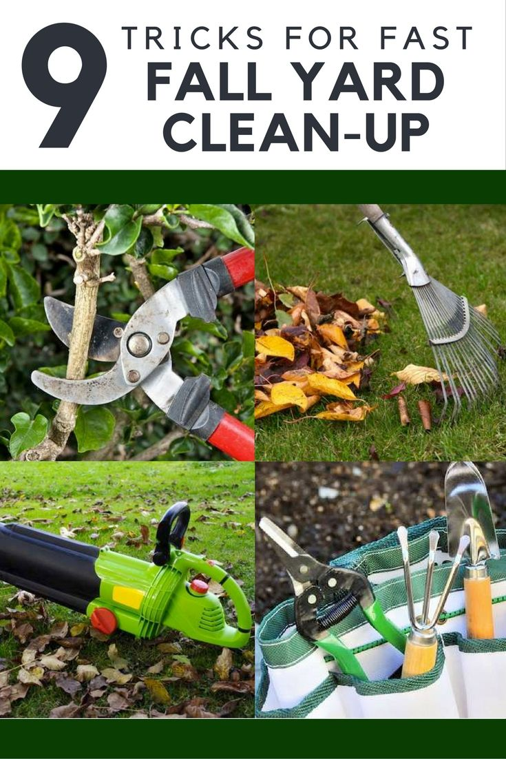 9 Tricks For Fast And Easy Fall Yard Cleanup Fall Clean Up Fall