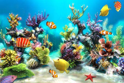 Beautiful With Images Aquarium Live Wallpaper Wallpaper Pc