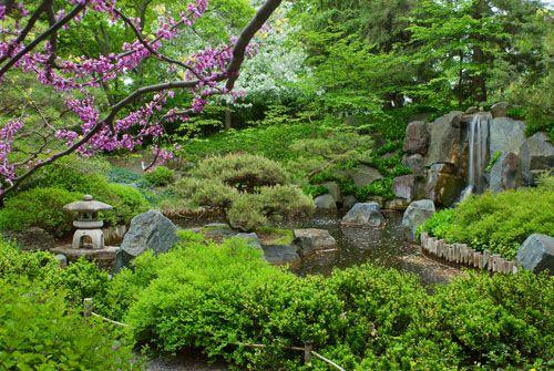 See Hanami at the Japanese Garden in Bad Langensalza, Germany | 335x500