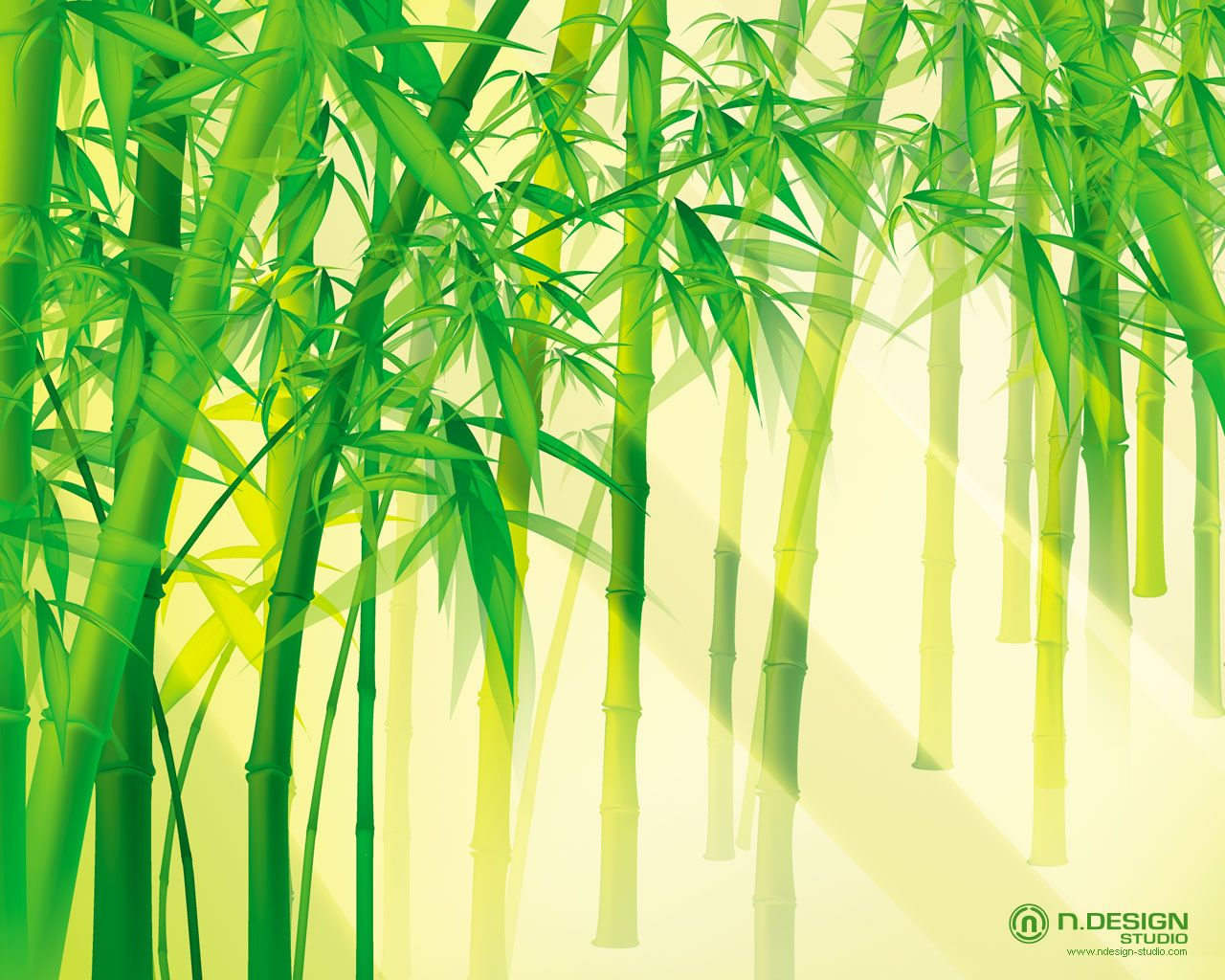 bamboo hd wallpapers backgrounds wallpaper | wallpapers for desktop