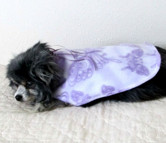 Small Dog Coat Fleece Butterfly Print Made By Bloomingtailsdogduds