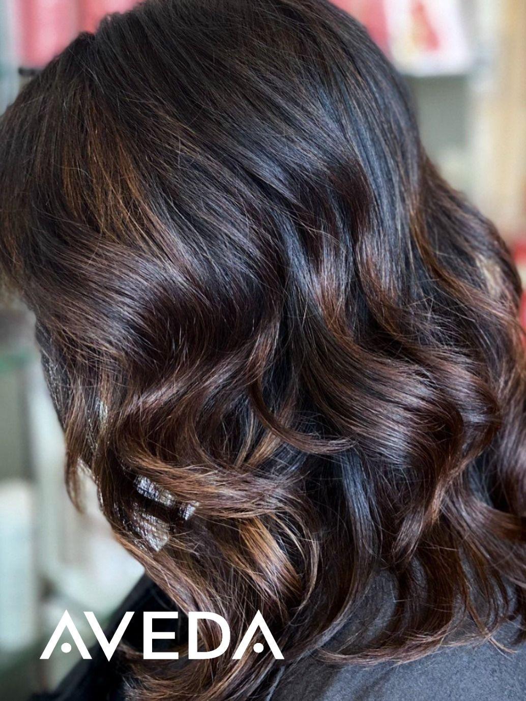 Hair Color Landing Page In 2020 Mocha Color Hair Aveda Hair Color Mocha Hair