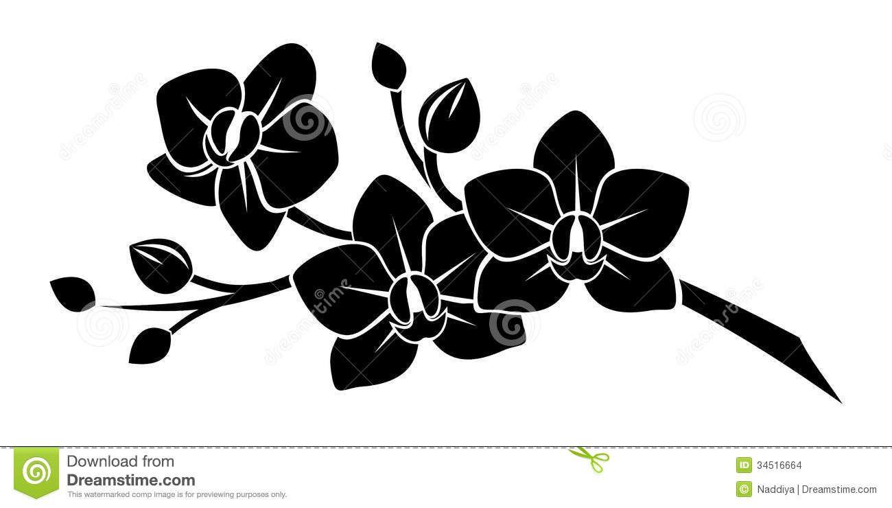 Dessin Fleur Noir Et Blanc Recherche Google Tatouage